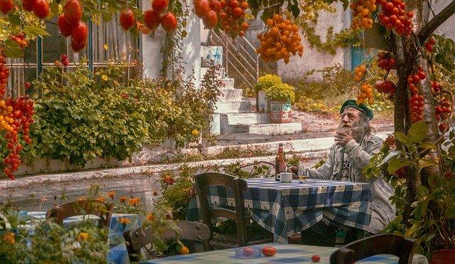 tomatoes in mediterranean