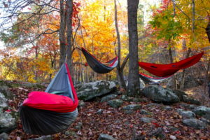 Fall_Camping_in_Pares_Hammocks