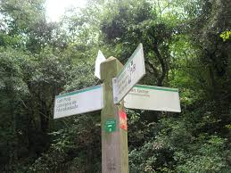 Which way to Collserola?