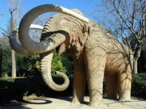 Mammoth in Parc Ciutadella