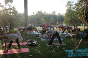 Yoga Ishta style