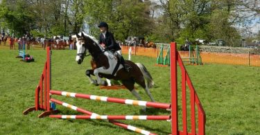 International Official Jumping Competition in Barcelona