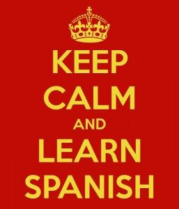 Learning-Spanish-Online-Vs.-Abroad-imagen-by-keepcalm-o-matic-257x300