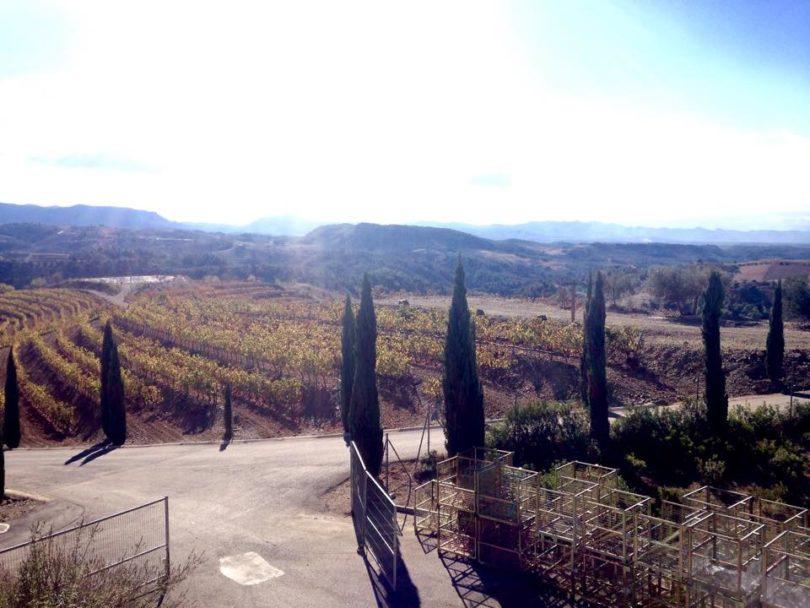 Torres Priorat Winery