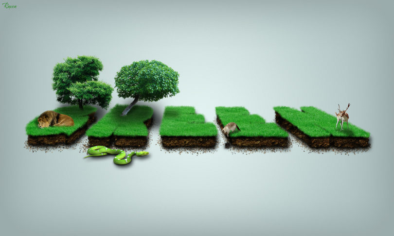 How to be environmentally friendly in BarcelonaHow to be environmentally friendly in Barcelona