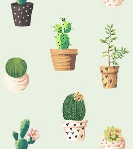 print of cacti
