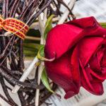 Sant Jordi: the patron saint of Catalonia