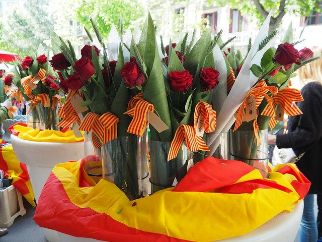 red roses and catalan flags