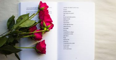 book with red roses
