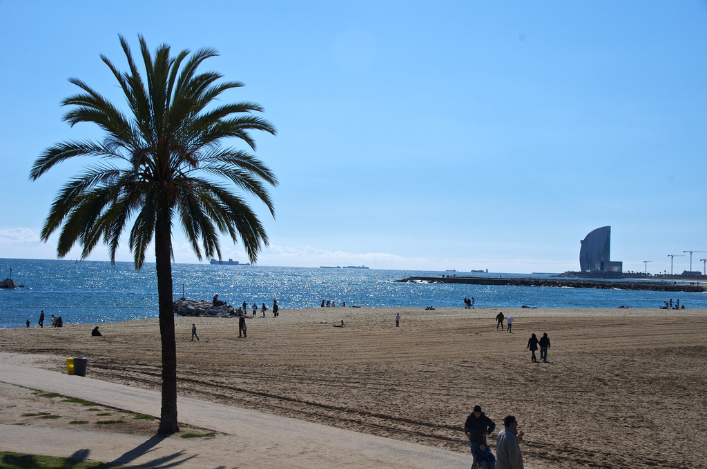 Tips For A Great Beach Experience In Barcelona Shbarcelona