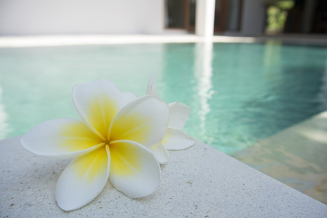 flower near pool