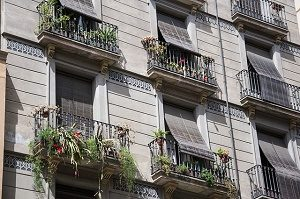 balconies on grey building with plants