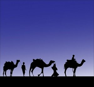 three wise men and their camels