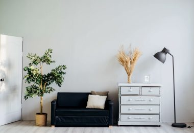 wall with furniture and plant