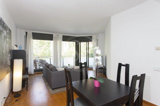 apartment with dark furniture